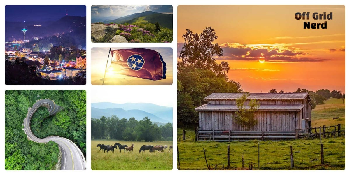 Tennessee for homesteading