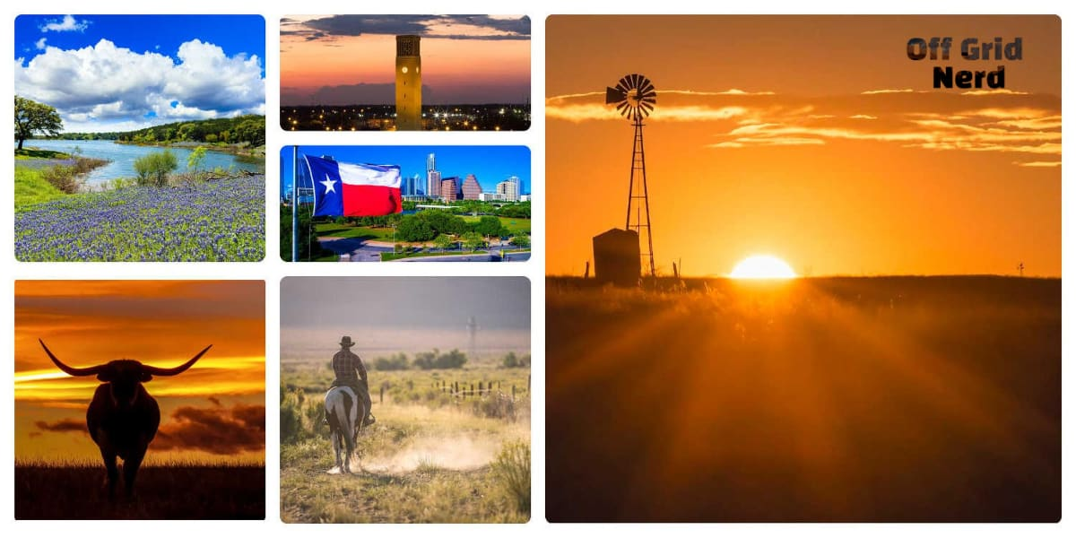 Texas for homesteading